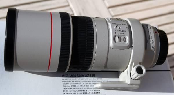 Canon-300-F4--2.jpg