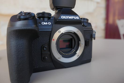 olympus_OM-EM1-II_(76_sur_63).jpg