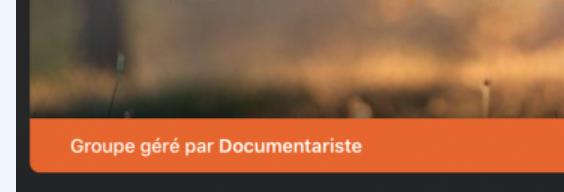 Capture d'écran 2020-07-08 à 13.09.47.png